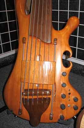 abstract and organic looking bass guitar